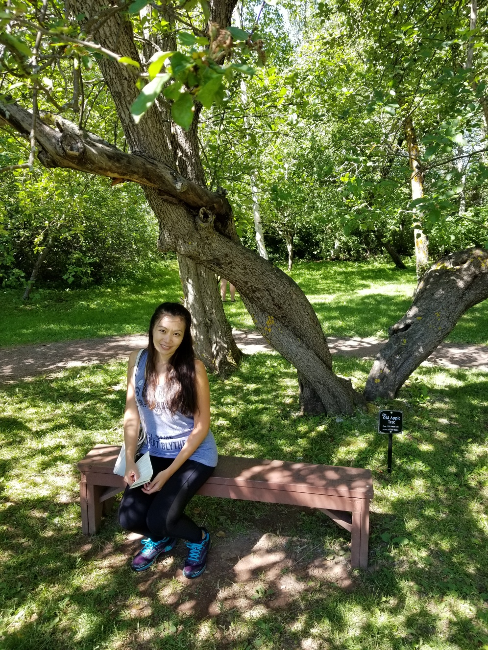 Under the apple tree where LM Montgomery liked to write